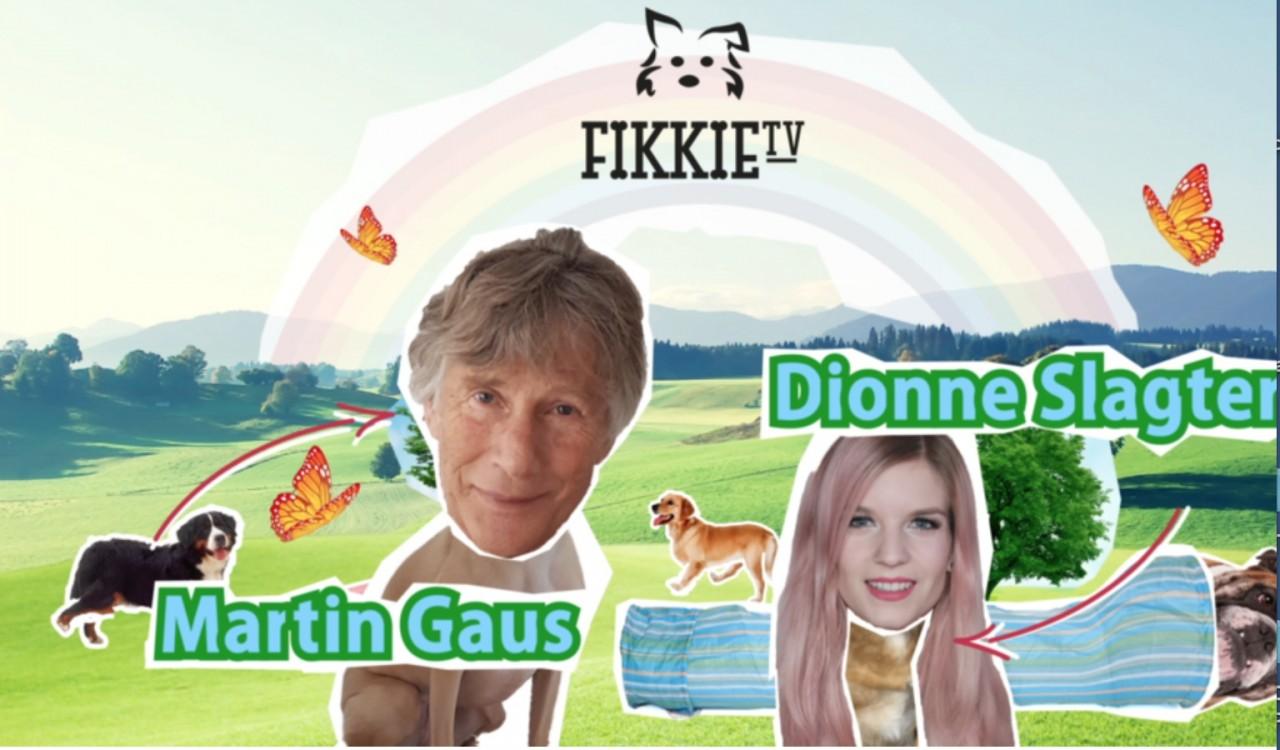 De lessen voor RTL van Fikkie TV